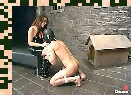 mistress strapon guy